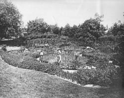 Sunken-Garden-better0001