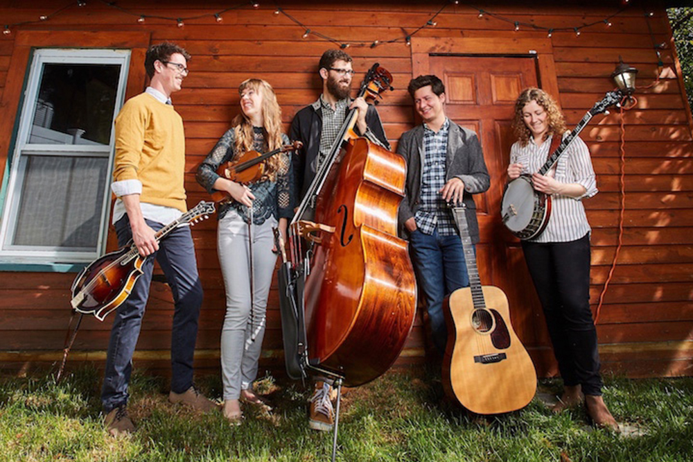 Music Events at Highfield Hall and Gardens